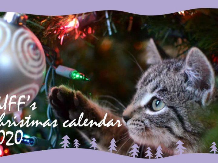 BUFF's Christmas calendar 2020